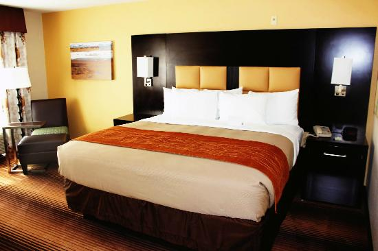 Comfort Inn: King guest room