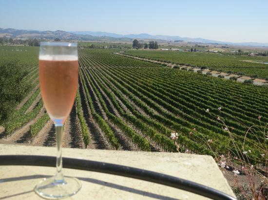 Sonoma Valley : VIew from Gloria Ferrer