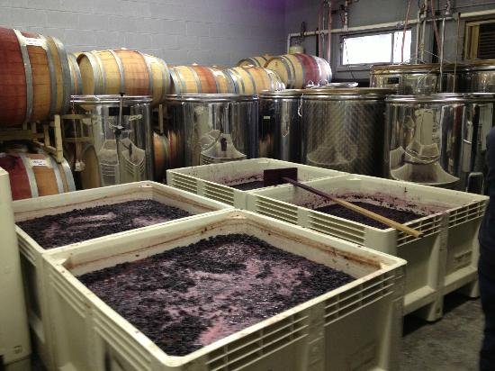 Snowy Peaks Winery: Don't forget to tour the wine-making room!