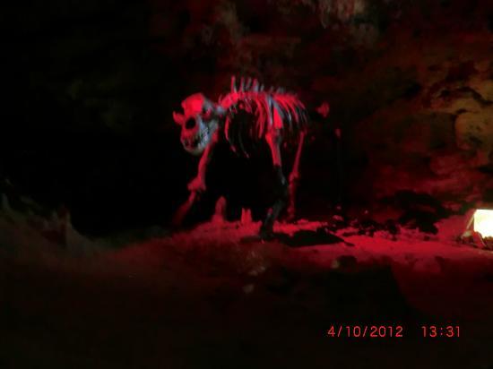 Teufelshöhle Pottenstein: In der Höhle 2
