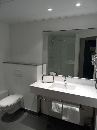 Ibis Styles Grenoble Centre Gare : la salle de bain / toilette