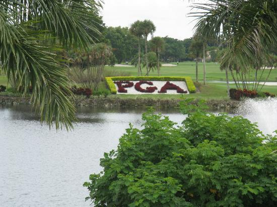 PGA National Resort & Spa: Pond and Golf course