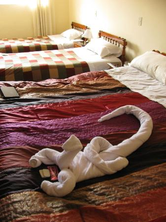 Hostal El Peregrino: room 9