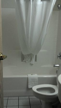 Microtel Inn & Suites by Wyndham Modesto Ceres: Bathroom