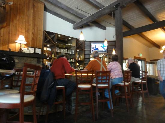 Mount Princeton Hot Springs Resort: Lodge bar