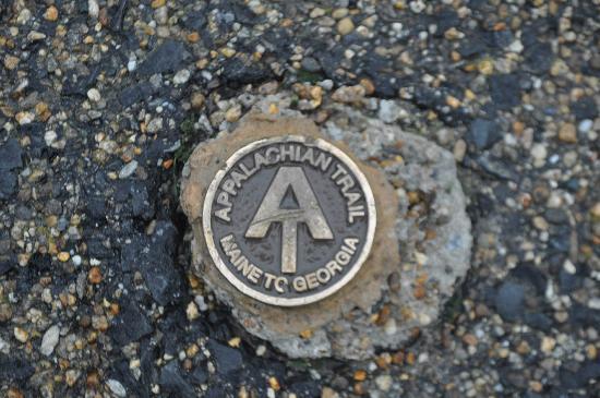Mount Greylock State Reservation: Mount Greylock