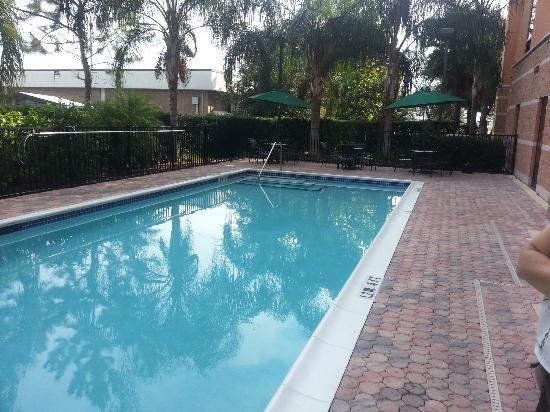 Hampton Inn & Suites Orlando - South Lake Buena Vista: picina