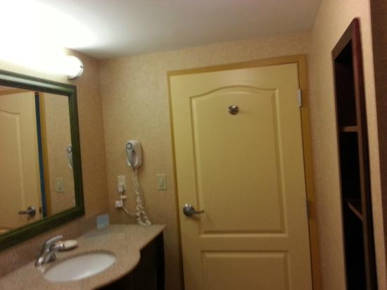 Hampton Inn & Suites Orlando - South Lake Buena Vista: baño