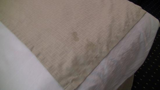 Microtel Inn & Suites by Wyndham Philadelphia Airport: stained sheets upon check in
