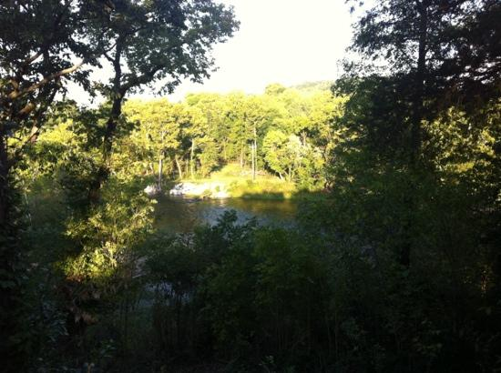 Spider Creek Resort : view from back deck of cabin 6.