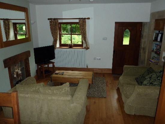 The Old Vicarage Country House Bed & Breakfast: Lounge with flat TV, DVD player, stereo, books & games