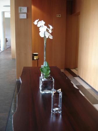 Valbusenda Hotel Bodega & Spa: Orquídeas por doquier