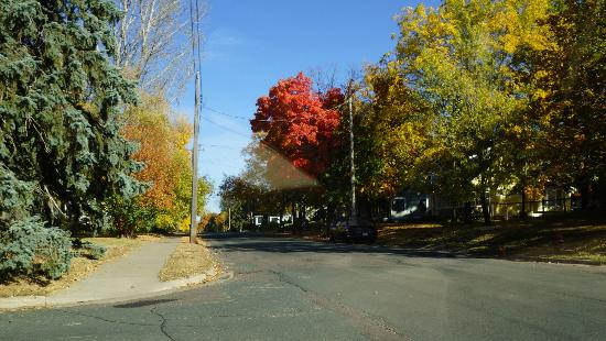 Comfort Inn & Suites: Fall colors along street in Lake Elmo