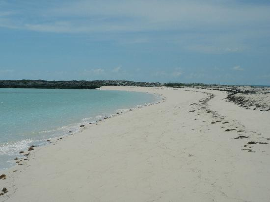 Staniel Cay Yacht Club: Twin Cay