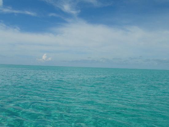 Staniel Cay Yacht Club: I love blue!