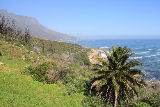 Fullham Lodge: view from pool area towards the chapman peak drive