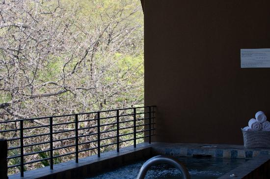 Four Seasons Resort Costa Rica at Peninsula Papagayo : Plunge pool at the hotels spa