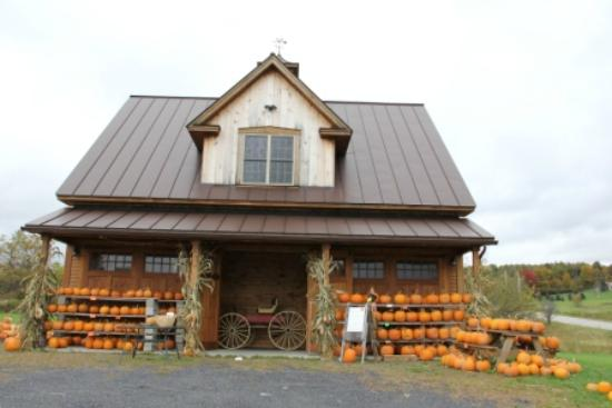 Side building picture of bragg farm sugar house gift for Building a house in vermont