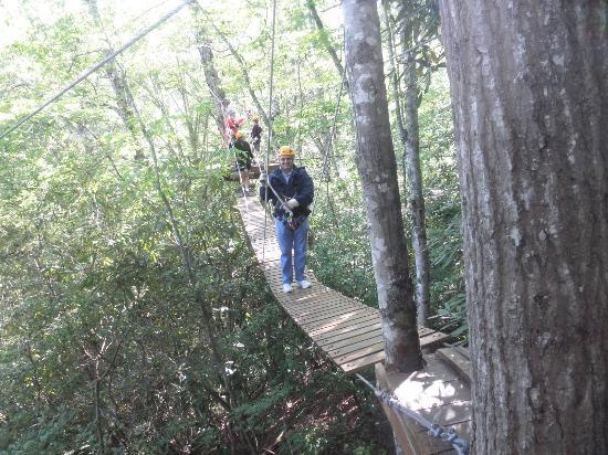 Wildwater Nantahala Falling Waters Resort & Canopy Tours: Another bridge to cross!