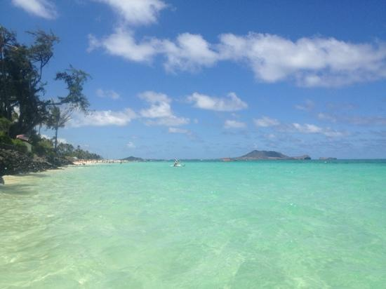 Lanikai Beach: looking back towards the sandy beach