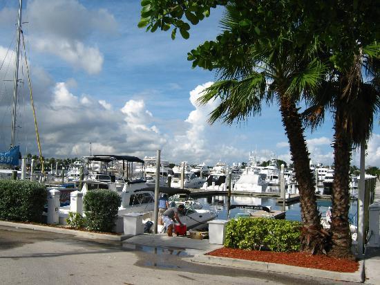 Bahia Mar Fort Lauderdale Beach - a Doubletree by Hilton Hotel: Marina