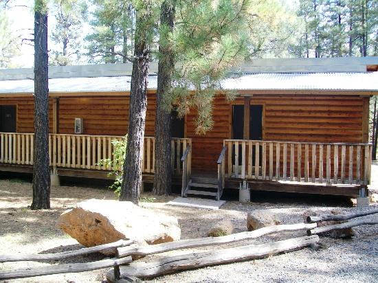 Mormon Lake Lodge and Campground: row rooms in cabin area