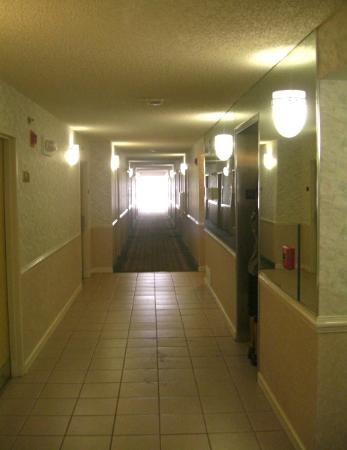 Best Western Fort Myers Inn & Suites: Hotel corridor leading to elevator.