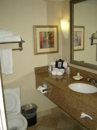 Holiday Inn Resort Lake George: bathroom, clean but small