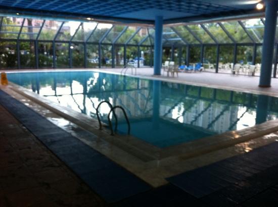 piscina cubierta picture of melia benidorm benidorm