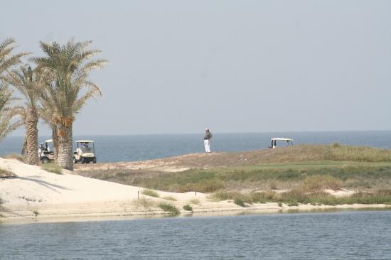Saadiyat Beach Golf Club: view from the hole