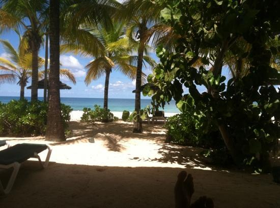 Galley Bay Resort: view from room 79