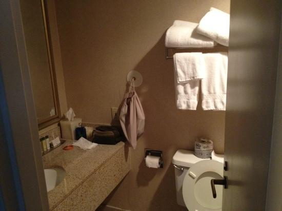DoubleTree by Hilton Hotel Portland: old bathrooms, and small