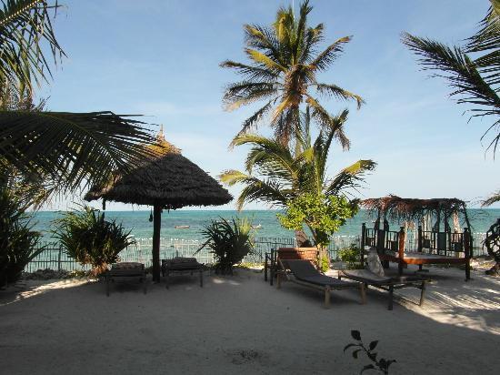 Mango Beach House : vue