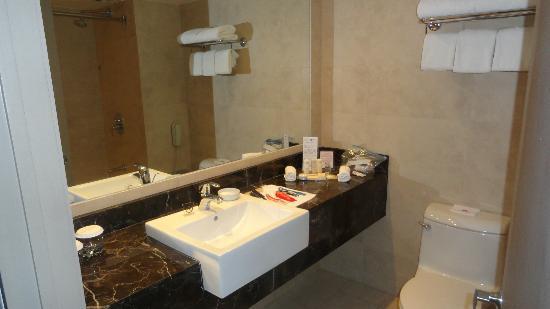 Crowne Plaza Santiago: bathroom
