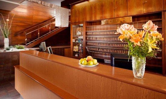 Hotel Harmonie: Reception