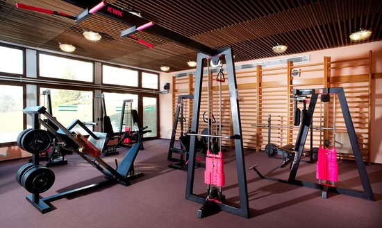 Hotel Harmonie: Fitness