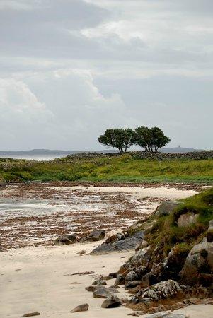 Atlantic Wave: L'île au trésor... et, coin de paradis...