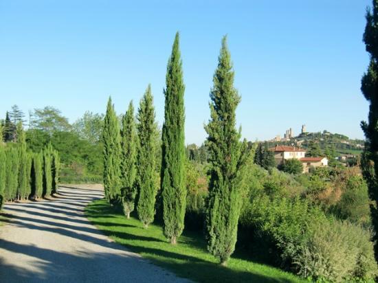 Villa Ducci: San Gimignano desde la entrada