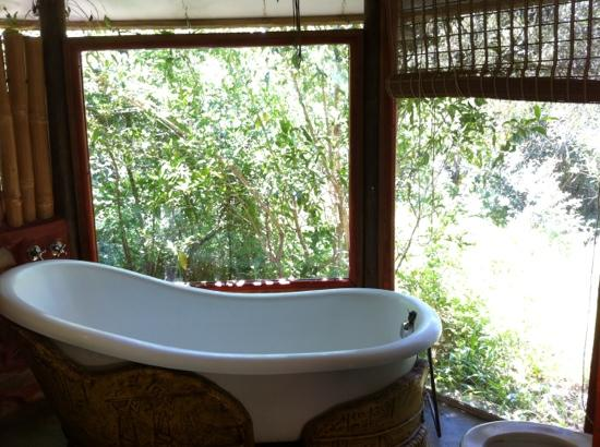Rocky Road Backpackers: forest bathroom