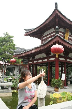 Tang Dynasty Art Garden Hotel: This is in the inner yard of the Tang-Hotel, the pagoda is very nice. Debsi is pointing to somew