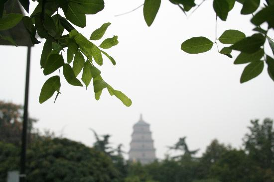 Tang Dynasty Art Garden Hotel: This is in the park in the very near, the view to the wild goose pagoda