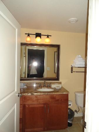 Wyndham Vacation Resorts At National Harbor: Guest Bathroom