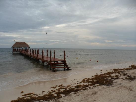 Secrets Silversands Riviera Cancun : alrededores del hotel