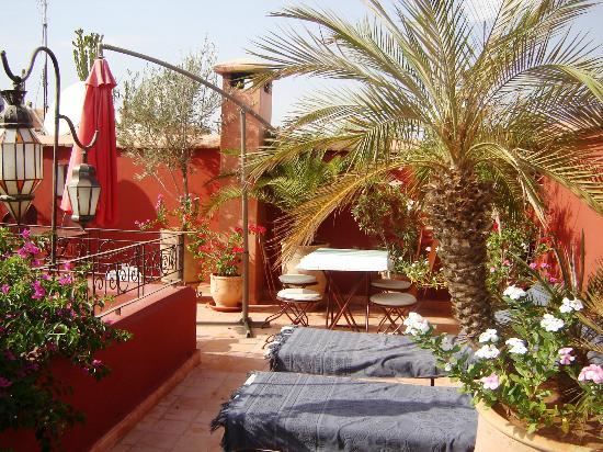 Riad Sadaka: Une terrasse,vous apportera fraicheur et détente à l'abris de tout regard.