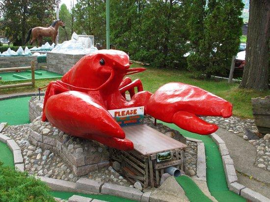 Around the World Miniature Golf : Maine Hole #7 USA
