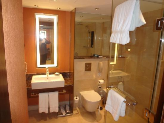 InterContinental Jordan : The bathroom
