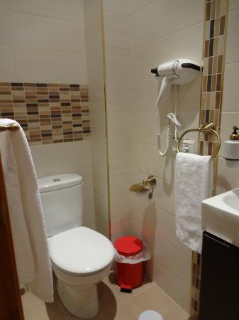 Hostal Segovia: バスルーム