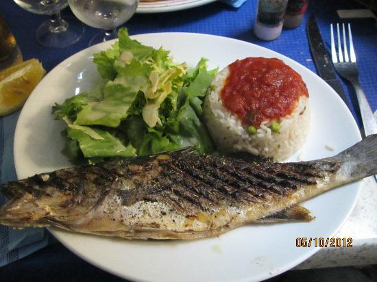 Le Plat Provencal : Fish with salad and rice