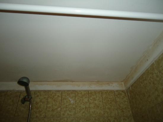 Paraiso del Sol Apartments: Techo del baño