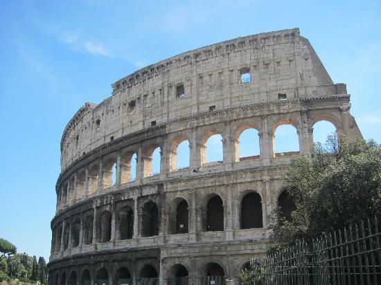 Palazzo Olivia: coloseum